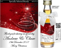 Personalised Alcoholic Miniature with Christmas Label 12